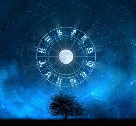 Гороскоп для всех знаков зодиака на 23 — 29 декабря