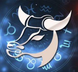 Прогноз тарологов с 23 по 29 декабря для представителей знака Тельцы