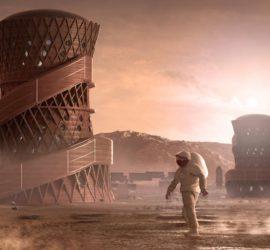 NASA вырастит дома и мебель из грибов для Луны и Марса