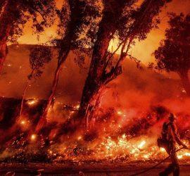 Австралия за месяц: лесные пожары, проливные дожди, песчаные бури, огромный град и ядовитые пауки