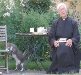 Кот-хулиган лишил завтрака священника во время молитвы
