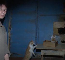 Россиянка 26 лет продержала дочь взаперти: невероятные подробности