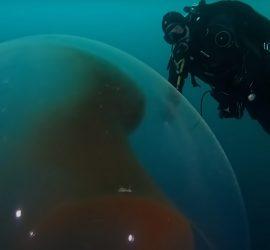 Подборка шокирующих находок, обнаруженных под водой