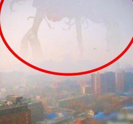 Шокирующие видео с гигантскими существами, которые попали на камеру