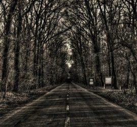 10 дорог, на которых сняты странные и жуткие вещи