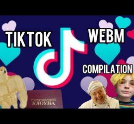 Лучшие видео из TikTok