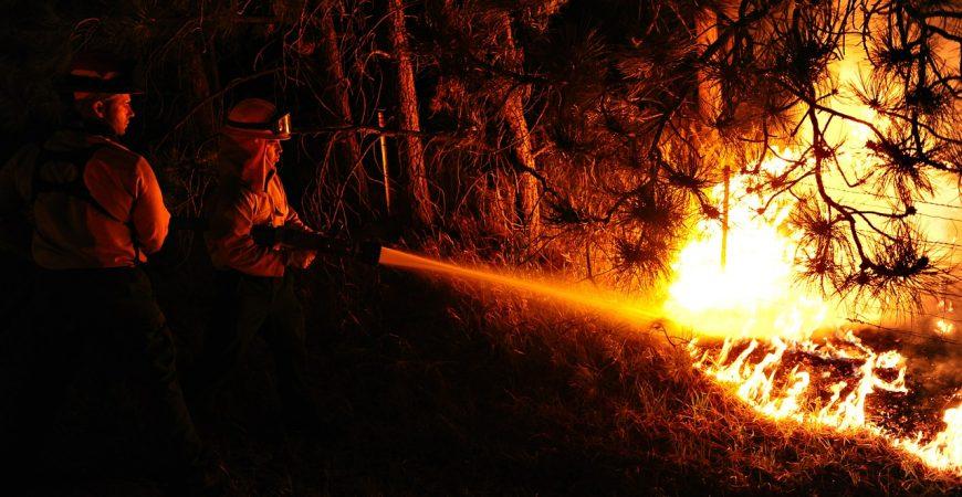 В Калифорнии вечеринка закончилась масштабным лесным пожаром