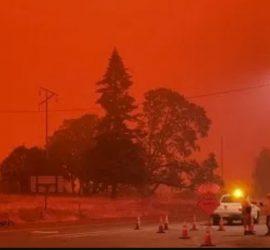 В США из-за лесных пожаров небо стало красным: кадры настоящего ада